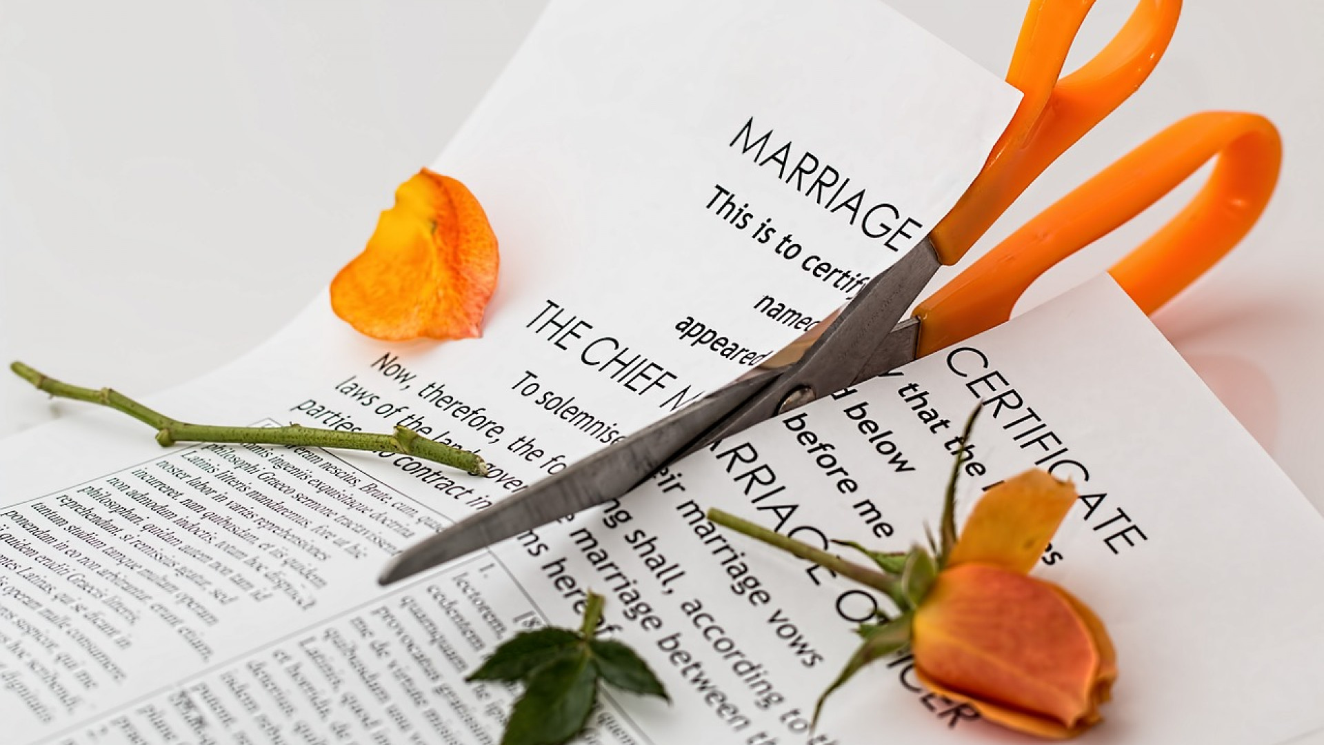 Un divorce rapide, c'est tout à fait possible !